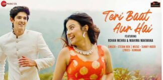 Teri Baat Aur Hai Hindi Song Lyrics - तेरी बात ओर है हिन्दी गाना
