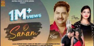 O Sanam Songs Lyrics - Kumar Sanu - Sapna Ratwa