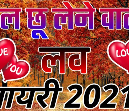 Heart Touching Shayari In English, Best Love Shayari