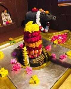 Maleshwar -Mahadev-Temple-Samod-shivling